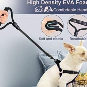 Heavy Duty Leash with Handle